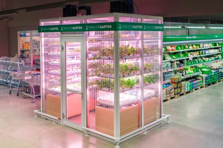 infarma-orto-idroponico-supermarket